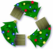 Christmas Tree Removal - Advance Junk Removal